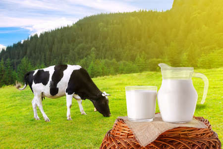 milk in jug and glass