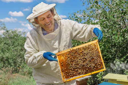 beekeeper holding a honeycomb Stock Photo