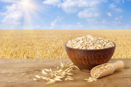 uncooked oatmeal in bowl, scoop with grains, oat ears on table with ripe cereal field on the background. Agriculture and harvest concept. Healthy eating for diet and vegan Banco de Imagens