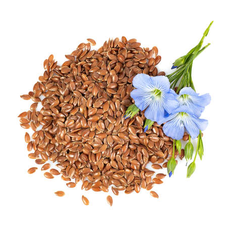 top view of flax seeds and flowers
