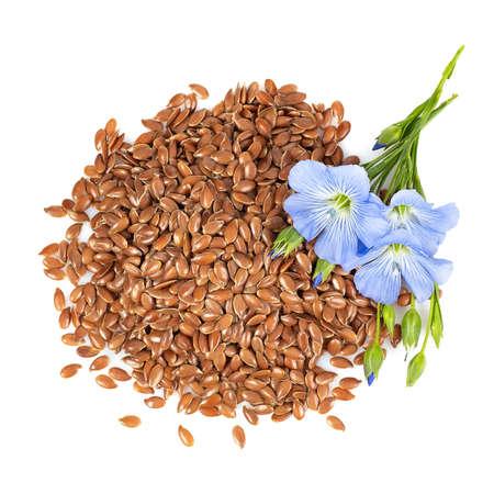 vista superior de semillas de lino y flores
