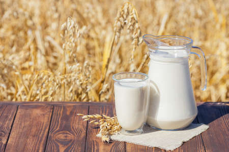 vegan oat milk in glass and jug on table over against ripe cereal field Zdjęcie Seryjne