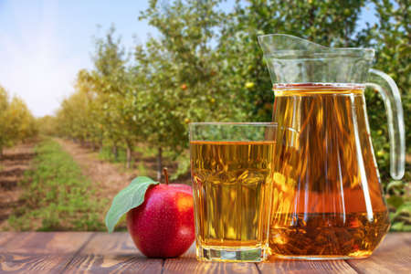 apple juice in glass and jug Stock Photo