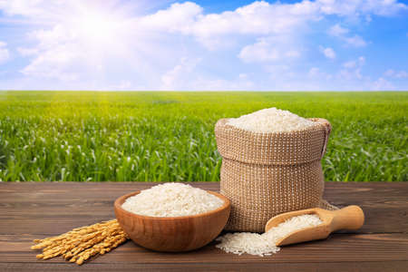long white rice in burlap sack and wooden bowl with ears on table against the green agricultural field Stock Photo