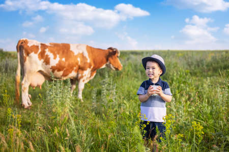 happy little boy drinking yogurt from glass on the meadow with grazing cow