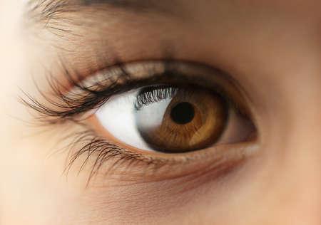 ojos marrones: Ni�o s ojo humano - Macro - cerca