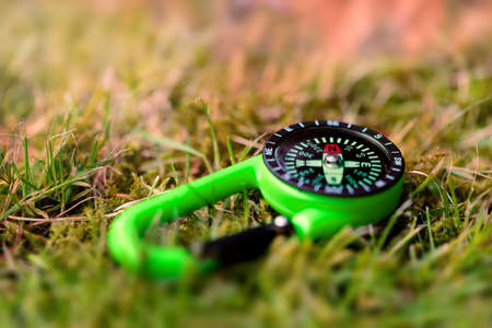 grass close up: Compass on the grass close up outdoors concept