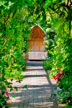 hideout: Garden trellis walkway hideout hidden tranquil sitting bench area outdoors empty shaded by vine and roses