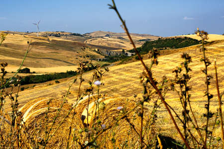 panoramas: summer landscapes of southern Italy