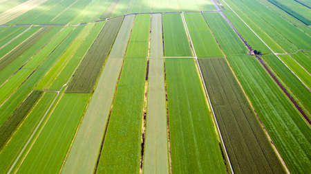 patchwork: Aerial photography of patchwork fields