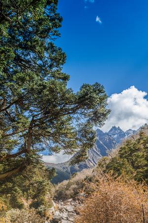 Mountain landscape with beautiful nature. Himalaya mountain view, Sagarmatha national park, Nepal. Stock Photo - 90613144