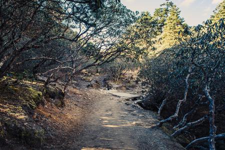 Mountain landscape with beautiful nature. Himalaya mountain view, Sagarmatha national park, Nepal. Stock Photo - 90613060