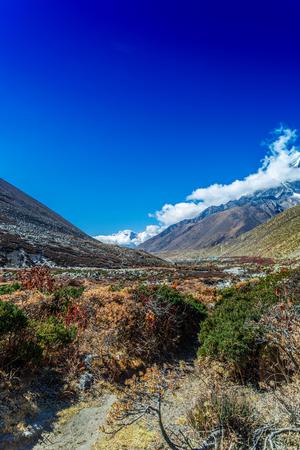 美しい自然と山の風景。ヒマラヤ山の景色、サガルマタ国立公園、ネパール。