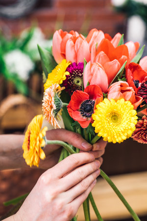 Crop shot of person holding bunch of various vivid flowers.