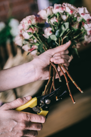 Close-up crop view of floral arranger cutting stems of blooming flowers making bouquet.  Stock Photo