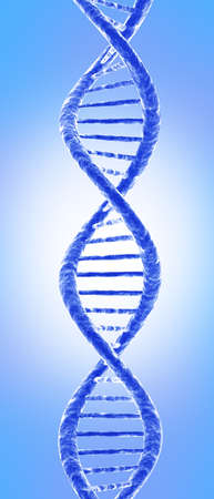 researchs: DNA molecule