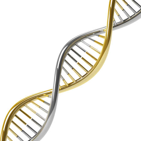 researchs: DNA molecule gold silver on a white background Stock Photo