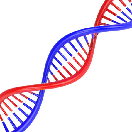 DNA molecule. Isolated on white background. 3D render Stock Photo