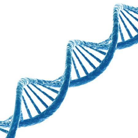 DNA 分子。白い背景上に分離。3 D のレンダリング 写真素材