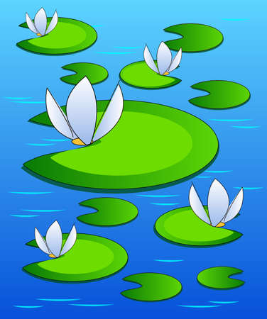 water plants: Background with water lilies on the surface of the pond