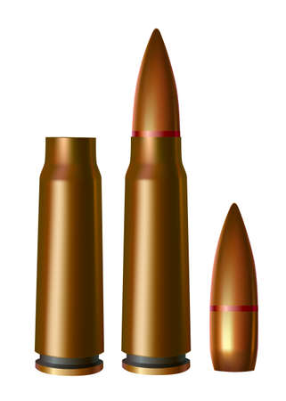ammunition: Sleeves and cartridges of ammunition bullets. isolated on white background