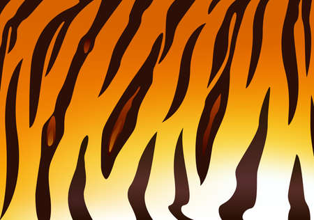 detail: Detail of tiger skin pattern. Vector illustration
