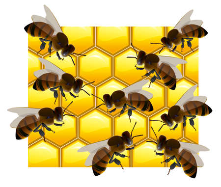 honeycombs: lot of bees on honeycombs. Illustration