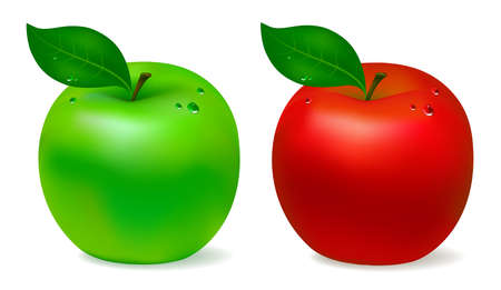 green apples: Apple green and red. Isolated on white background. Vector illustration Illustration