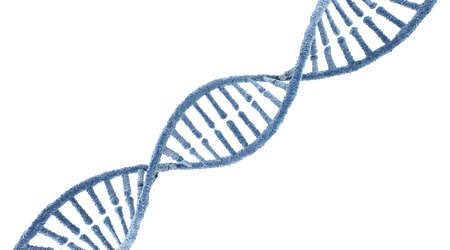 DNA molecule. Isolated on white background. 3D render 写真素材