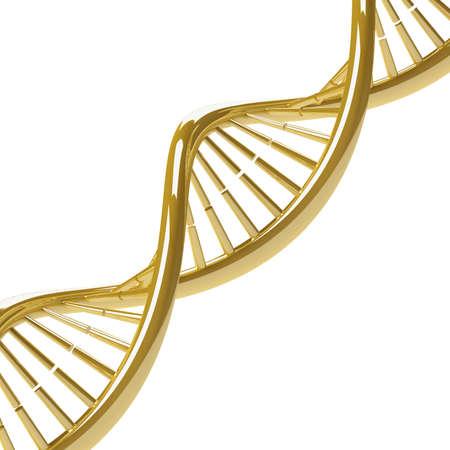 DNA molecule gold on a white background. 3D illustration