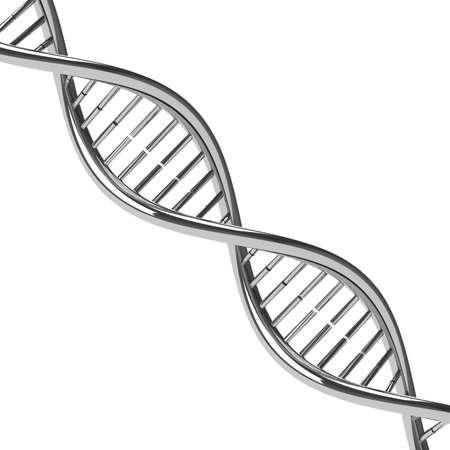 Chromed DNA molecule model. Isolated on a white background. 3D illustration 写真素材