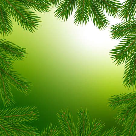 Frame with christmas tree branches. Vector illustration