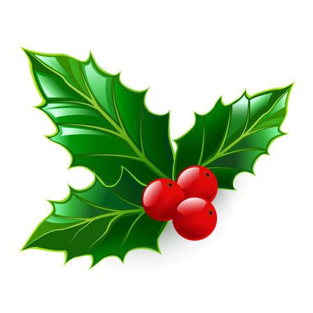 Holly. Christmas symbol. Design element. Isolated on a white background. Vector illustration. Ilustracja