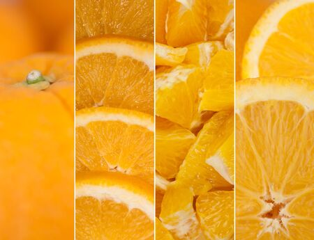 collection of orange oranges details photo
