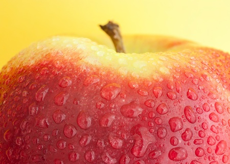 red apple on a yellow background photo