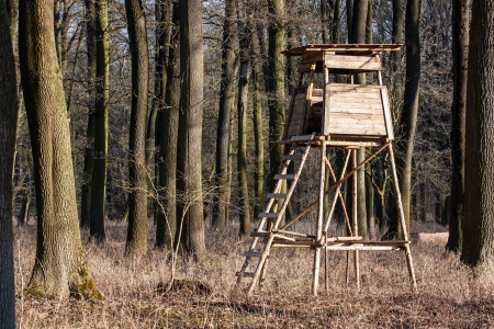 hunting forest lookout tower in the leafy woods Stock Photo