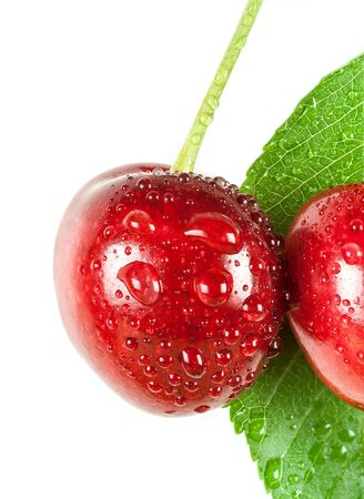 cherries with water drops and green leaf