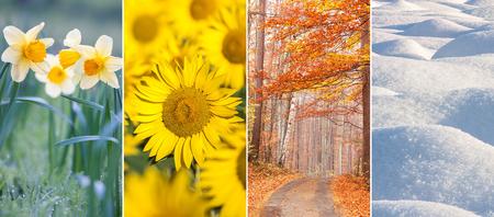 photo collage of four seasons
