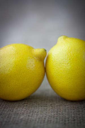 yellow lemons in vintage style