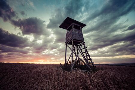 hunting forest lookout tower in a field at sunset