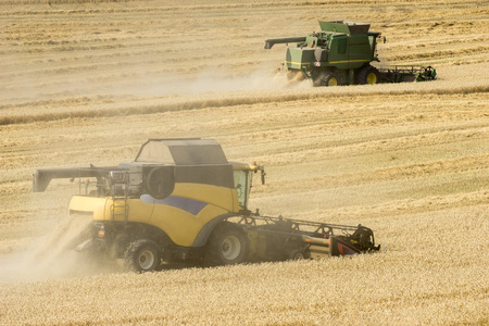 harvesters: Two moving harvesters on wheat corn field
