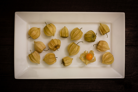husk tomato: gooseberry on a white plate