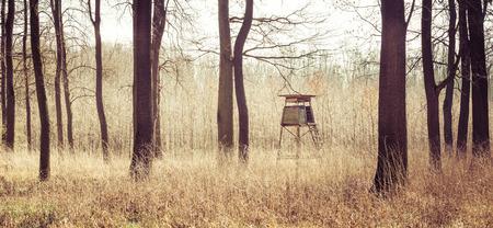 panorama van het bos jagen high hide Stockfoto