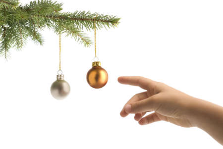 christmas tree branch and children hand reaching balls on white background
