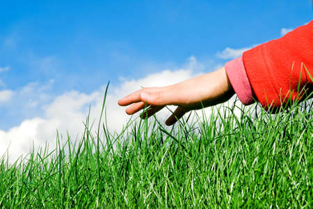 child hand moving above the grass Stock Photo - 3010548