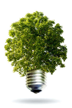 ecological idea photo