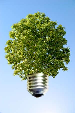ecological idea against a blue sky photo