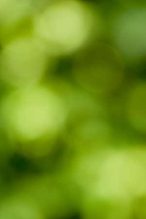 stark: Natur aus stark Fokus