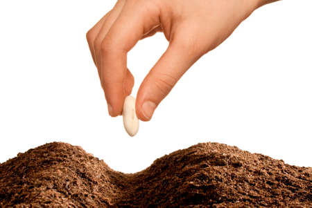hand seeding isolated over white background
