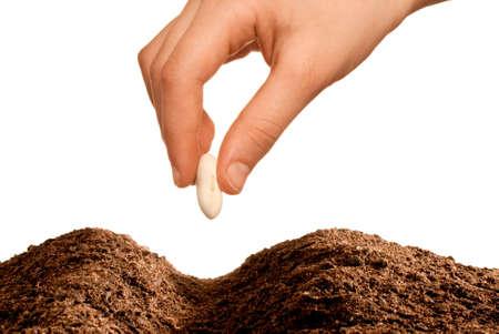 planting season: hand seeding isolated over white background